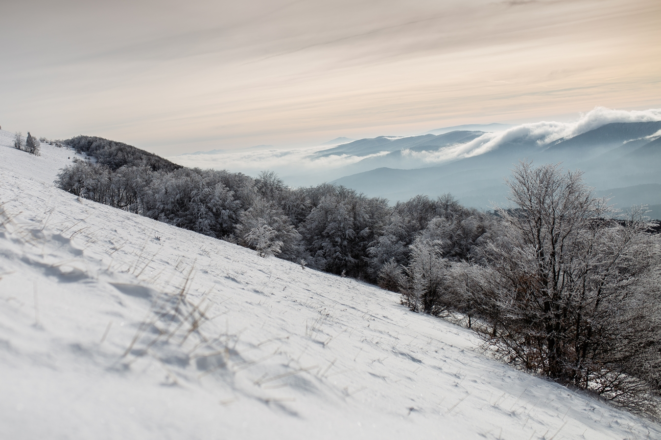 połonina caryńska zimą